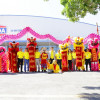IGNITE THE YEAR OF THE PIG 2019 WITH TOA PAINT VIETNAM